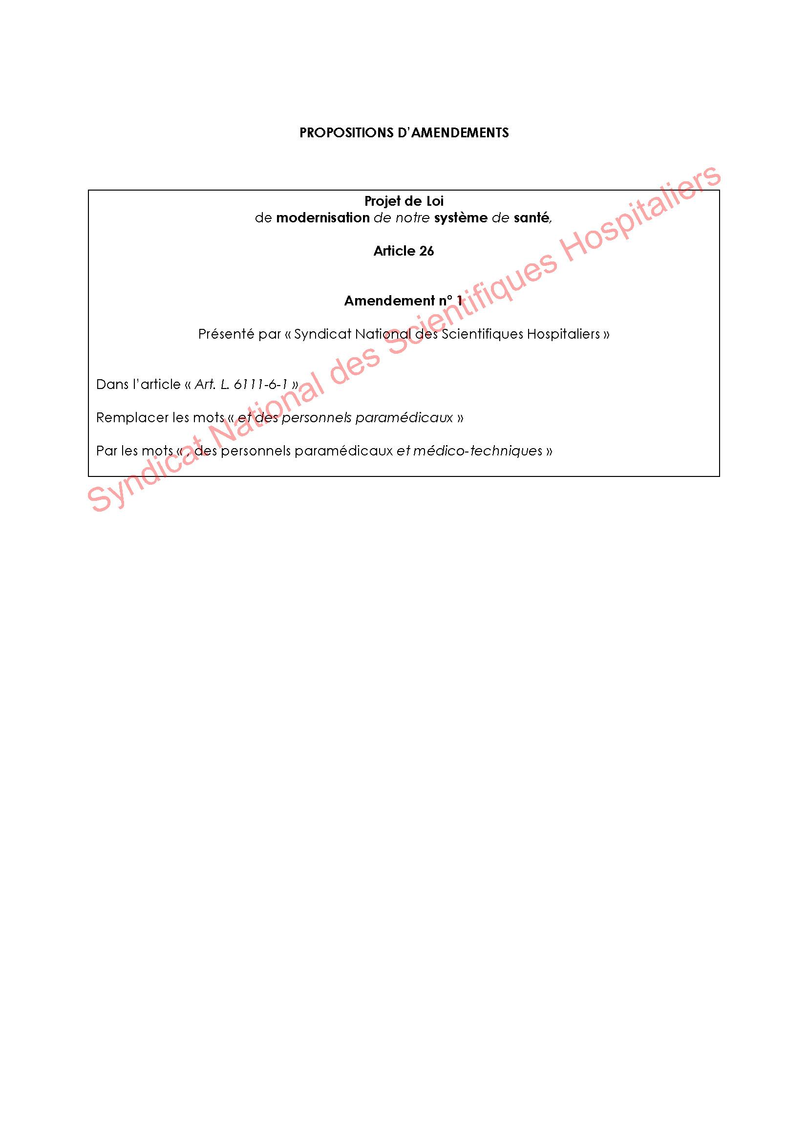 Projet de Loi Santé - Amendements du SNSH
